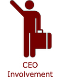 CEO Involvement